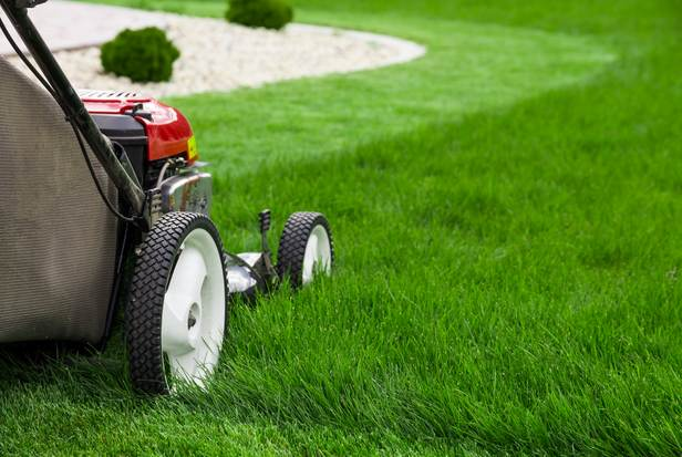 Best Grass Cutting Values In West County St Louis Mo